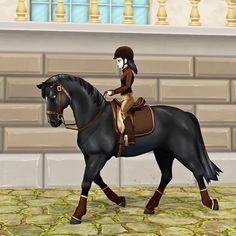 Star Citizen, Star Stable Online, Star Stable Horses, Horse Riding Gear, Craving Chocolate, Horse Games, Cute Stars, Horses For Sale, Equestrian Outfits