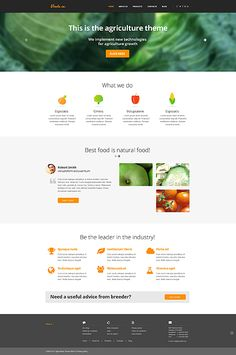 Fresh, clean & natural - brand new agricultural Bootstrap Template, Item: 45436, $75 => http://templates-n-more.com