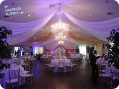 W Drapings of Florida...reception drappings (add butterflies on drapping in silver, blue & white)