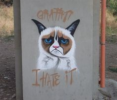 Graffiti. I hate it.