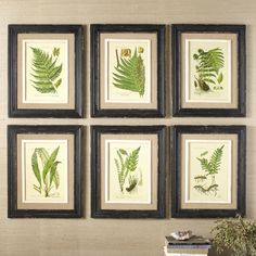 Frond Framed Prints | A simple way to add soothing color to a blank wall or existing gallery wall, this set of framed prints elicits natural appeal. Set of six.