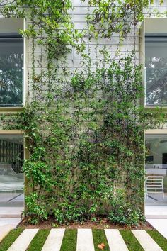 Home Garden Design .Home Garden Design Garden Wall Designs, Cottage Garden Design, Landscape And Urbanism, Landscape Design, Green Architecture, Sustainable Architecture, Wall Climbing Plants, Tropical Garden Design, Tropical Backyard