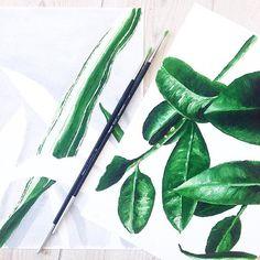 Work in progress... #art #wip #oilpainting #oilpaint #oil #watercolor #annetweelinkdesign #botanical #urbanjungle #leafs #leaf #cactus #green #plants #like4like #tagsforlikes #illustration #like #creativity #instagood #brush #designer #artsy #lovetopaint #botanic