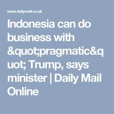 "Indonesia can do business with ""pragmatic"" Trump, says minister 