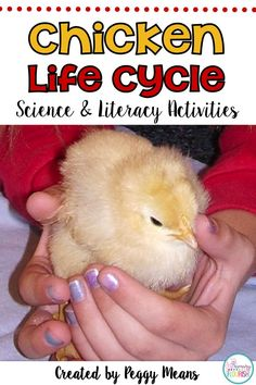 This is a great spring unit packed with fun information and activities on the theme of the Chicken Life Cycle. Includes: Hands-On Egg Lab with lab report, Teacher Tips on Hatching Chicks, Anchor Posters, and so much more! Kindergarten Writing, Teaching Writing, Teaching Science, Kids Learning Activities, Learning Resources, Science Lessons, Life Science, English Language, Language Arts