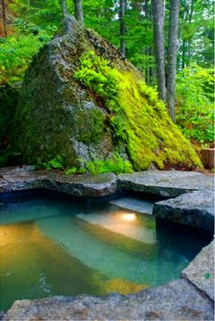 wow, not sure if this would have the same appeal without that massive moss-covered rock, which we could obviously not sustain in our weather, but in this context, this pool is lovely.