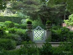 Buy 'Garden gate at Kennerton Green, near Bowral, NSW' by BronReid as a Greeting Card Backyard Fences, Garden Fencing, Fence Landscaping, Fence Design, Garden Design, Garden Entrance, Garden Shrubs, Modern Fence, Up House