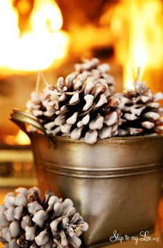 How to make Easy Pinecone Fire Starters. Perfect for colder months or camping! #make #camping #tips skiptomylou.org