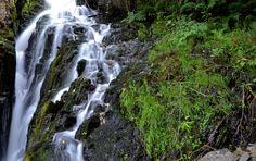 Cascada 6