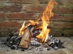 Composting Ashes: Is Ash Good For Compost?