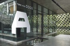 Architecture for Dogs - 犬のための建築 | WORKS | HARA DESIGN INSTITUTE