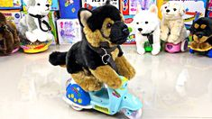 This is a clip for everyone who likes dogs and toys. Here are some of the most well-known breeds and some FUN FACTS. Mans Best Friend, Best Friends, Youtube Banners, Some Fun, Dog Breeds, Fun Facts, Cute Animals, Learning, Toys