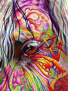 Horse Eye by artistsuetaylor
