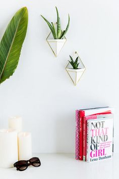 The Small Triangle Wall Planters are inspired by geometric shapes and allow for customization! Mount multiple triangles in a group for an eye catching statement. Paint the gold black. Burlap Board, Deer Photos, Triangle Wall, Office Items, Wall Planters, Dining Room Walls, Plant Wall, Clay Projects, Home Gifts