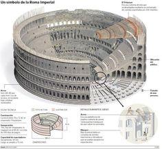 Originalmente era denominado Anfiteatro Flavio (Amphitheatrum Flavium), en honor a la Dinastía Flavia de emperadores que lo construyó, y pasó a ser llamado Colosseum por una gran estatua ubicada junto a él, el Coloso de Nerón, no conservada actualmente.    El Anfiteatro Flavio es un enorme edificio ovalado de 189 metros de largo por 156 de ancho, y de 57 metros de altura, con un perímetro de la elíptica de 524 metros      Fue mandado construir por Vespasiano en el año 72 d.C.