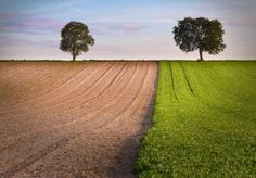 nuove Food Marketing, Country Roads, Environment