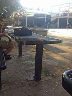 Lazy days in public
