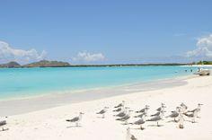#1 Los Roques - 10 Mejores Playas en Venezuela