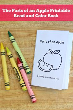 Your children at home and students at school will have fun exploring the anatomy of an apple with this The Parts of an Apple free printable read and color mini book. Fall Preschool Activities, Apple Activities, Preschool Education, Free Preschool, Writing Activities, Preschool Apples, Thanksgiving Activities, Thanksgiving Crafts, Learning Resources