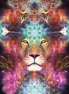 Lions Gate 2019 ~ Complete Embodiment of the Soul as We Enter the Creative Cycle By: Archangel Michael through Celia Fenn ~~~~~~~ Beloved Ones, Psychedelic Art, Lion Tapestry, Wall Tapestry, Lions Gate, Psy Art, Lion Art, Visionary Art, Fractal Art, Sacred Geometry