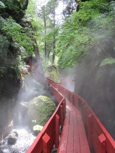 The Path to Termas Geometricas hot springs near Coñaripe, Chile