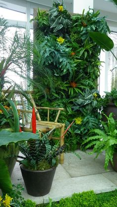 1000 Images About Green Walls On Pinterest Living Walls