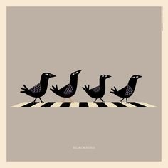 "The #Beatles' ""Blackbird"" 