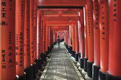 Japanese Pillars