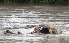 Dramatic photos of cat, owner swimming to safety during Alberta flooding