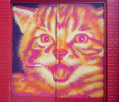 queridos gatos: Graffitis