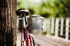 10 cidades que deves visitar em bicicleta