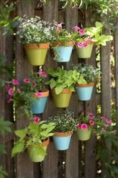 Vertical Garden / DIY: shipping pallet vertical garden - CotCozy