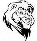 Lion Graphic. School Spiritwear Shirts and Apparel. #spiritwearshirts #lion #mascot #schoolspiritwear #bigcat