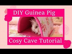 DIY Guinea Pig Cosy Cave Tutorial - YouTube