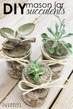 Cute DIY Mason Jar Ideas - DIY Mason Jar Succulents - Fun Crafts, Creative Room Decor, Homemade Gifts, Creative Home Decor Projects and DIY Mason Jar Lights - Cool Crafts for Teens and Tween Girls http://diyprojectsforteens.com/cute-diy-mason-jar-crafts