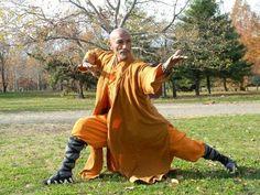 Tai Chi, Kung Fu Martial Arts, Chinese Martial Arts, Indian Martial Arts, Shaolin Kung Fu, Action Pose Reference, Action Poses, Karate, Bruce Lee