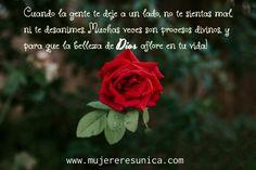 Procesos de Dios www.mujereresunica.com