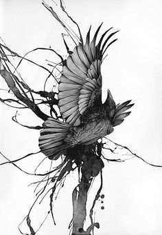 crow,blackandwhite,drawing,illustration,bird,ink-7e7a25db0e0228ffeaba65d11ac3e946_h.jpg (346×500)