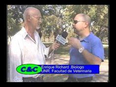 Entrevista al Dr. Enrique Richard, I Curso Internacional de Guardambient...