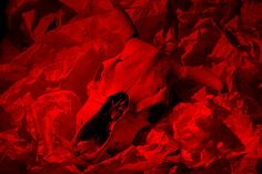 Syl-Arena-20150204-8720-Cowskull+Paper-Ball-RGB-Cowskull+Paper-Ball-R-600px