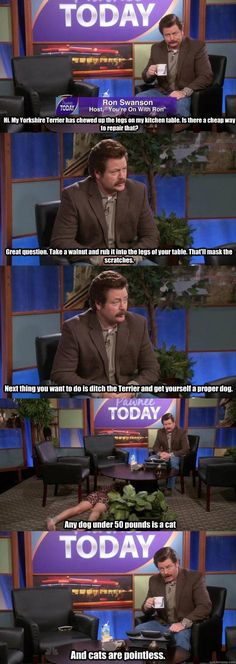 I thought the Ron Swanson quote was funny. But am I the only person who noticed the random lady laying under the table in the fourth panel. Dear pinner:WATCH THE SHOW! Tv Quotes, Funny Quotes, Ron Swanson Quotes, Doug Funnie, Tori Tori, Parks And Recs, Fandoms, Parks And Recreation, My Guy