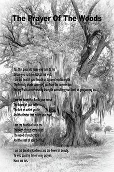 The Prayer Of The Woods 4 Bw.  The natural world is under threat from climate change and abuse. For too long we have taken our planet for granted. This poem has a message that is vital to our very existence. It was written by Veiga Simones in May 1914 and is inscribed in stone near a tree inside the walls of Castelo de S.Jorge in Lisbon, Portugal.