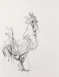 """Rooster (Facing Right)""  Artist Susan Siegel  10.5"" x 15.5""  Sumi Ink on Paper  2012"
