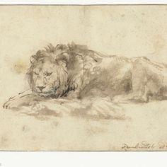 Liggende leeuw, Rembrandt Harmensz. van Rijn, 1650 - 1659 - Rijksmuseum