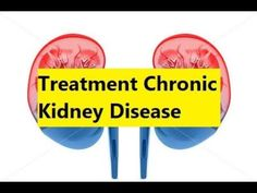 Treatment Chronic Kidney Disease - Natural Remedies for Kidney Disease