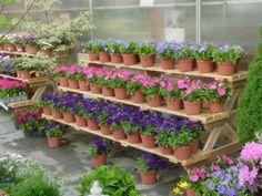 Tiered Garden Display and Step Benches | Maine Bucket Garden Shop, Garden Art, Garden Design, Easy Garden, Garden Nursery, Plant Nursery, Garden Center Displays, Garden Shelves, Tiered Garden