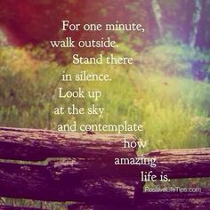 for one minute, walk outside. stand there in silence. look up to the sky and contemplate how amazing life is.❤️