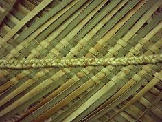 FLAXWEAVING This unique form of the weaving craft was invented by Maori specifically for native flax (harakeke) and is a good represent. Flax Weaving, Handbag Patterns, Weaving Patterns, Inventions, Baskets, Blog, Crafts, Hobby, Knots