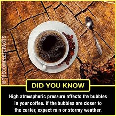 Predict weather with a cup of coffee! Wierd Facts, Wow Facts, Intresting Facts, Real Facts, True Facts, Funny Facts, Some Amazing Facts, Interesting Facts About World, Unbelievable Facts