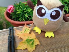 Owly is wondering what is happening to these maple leaves. Day 214 of #yearofowly #lifeofowly